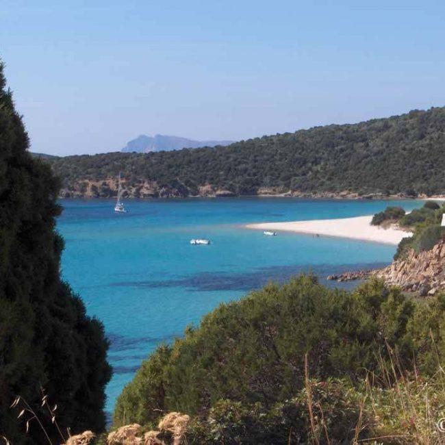 Terranoa Service, traslochi in Sardegna e non solo